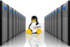 Reasons To Switch To Linux VPS Hosting